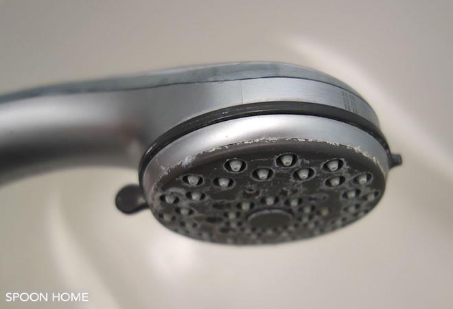 掃除 シャワー ヘッド